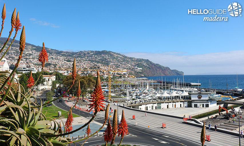 A look at the Funchal Marina
