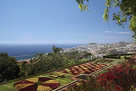 Sightseeing tour in Funchal, Madeira