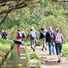 thumb 09 madeira tours